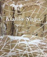 菅木志雄「Kishio Suga」