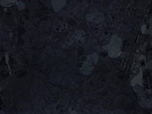 Element - Black #5