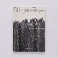 戸谷成雄:森の襞の行方  Shigeo TOYA: Folds, Gazes and Anima of the Woods