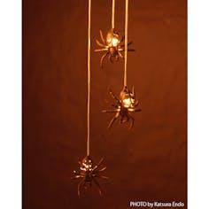 タランチュラの灯華